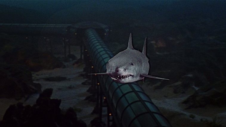 """Image result for jaws 3"""""""