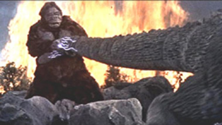 Image result for king kong vs godzilla