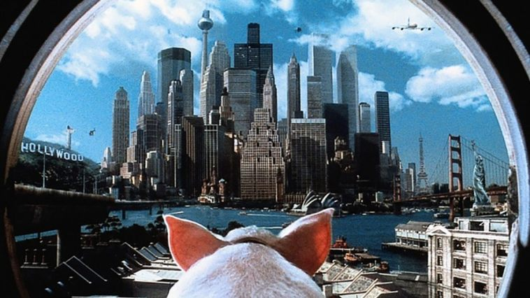 Babe Pig In The City